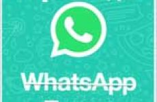 Как сделать форматирование текста в WhatsApp