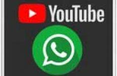 Как отправить видео с Ютуба в Ватсап без ссылки